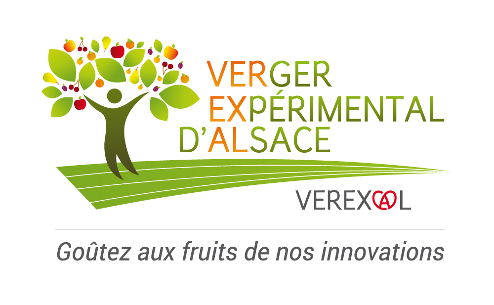 Logo Association de verger expérimental d'Alsace (VEREXAL)
